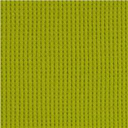Cotton Thermal Knit Lime