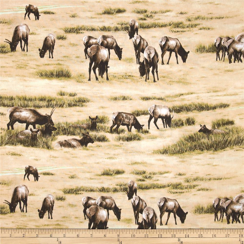 Elk Gathering Grazing Tan