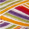 Lion Brand Jamie Yarn (206) Mardi Gras Stripes