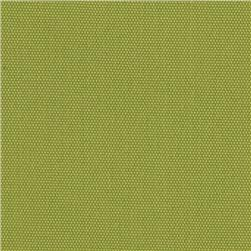 Richloom Solar Outdoor Solid Kiwi