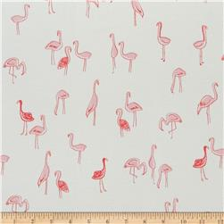 Dear Stella Jersey Knit Flamingoes Bay