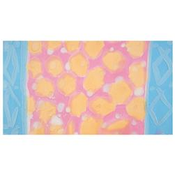 Bali Brushstroke Batiks Blotch Double Border Sherbet