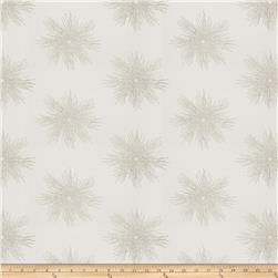Fabricut  Embroidered Metallic Sunburst  Platinum