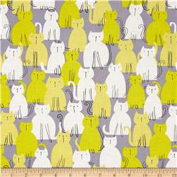 Michael Miller Pastel Pop Citron Grey Here Kitty Kitty Citron