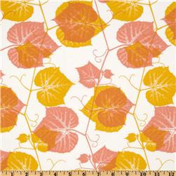 Ty Pennington Impressions Ivy Orange