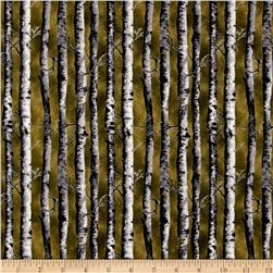 Northwoods Birch Green