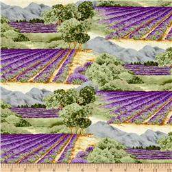 Lavender Bliss Fields Multi