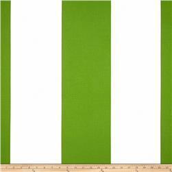 Michael Miller Bekko Home Decor Wide Stripe Grass
