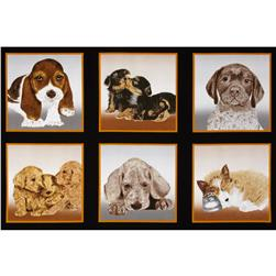 "Puppy Love 24"" Panel Multi"