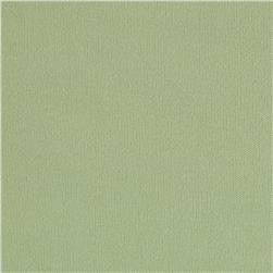 Single Knit Solid Pastel Lime Fabric