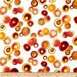 Nature's Treasures Medium Circles Amber