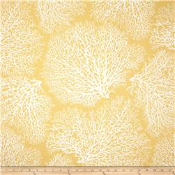 Magnolia Home Fashions Ariel Coral Sunset Fabric