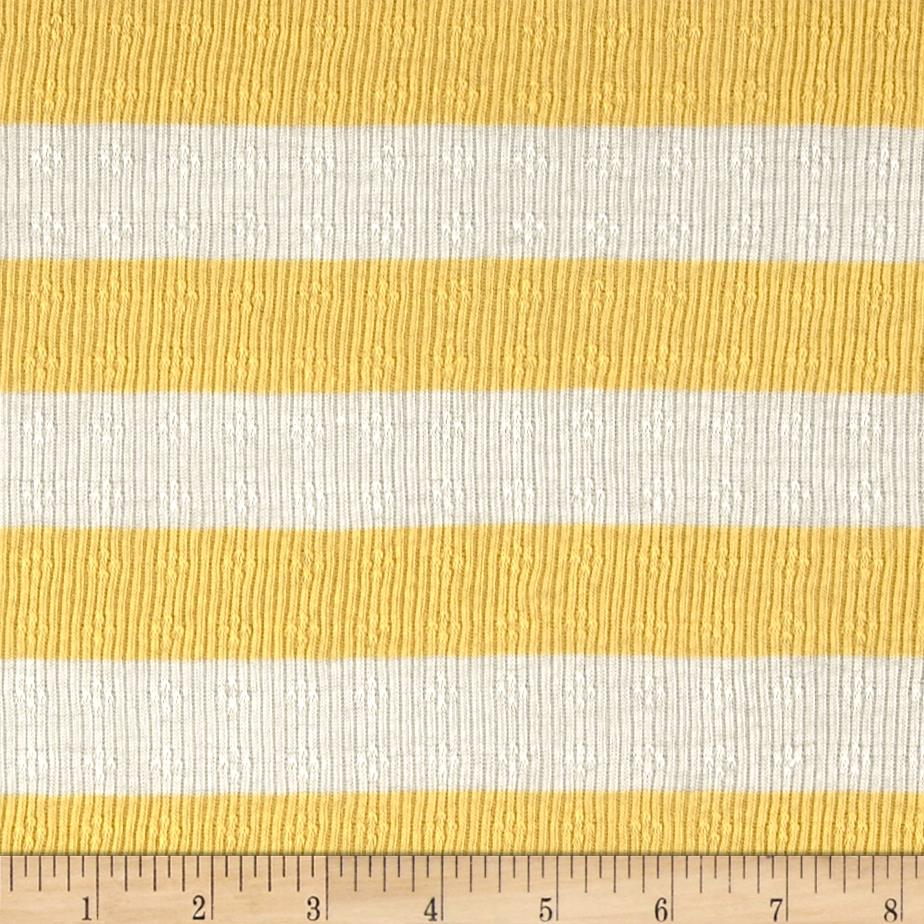 Yarn Dyed Pointelle Rib Knit Stripe Sunshine Fabric