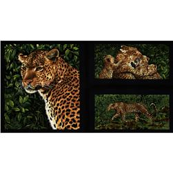 Leopards Panel Black