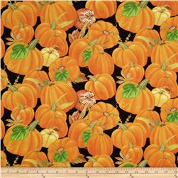 Harvest Time Packed Pumpkins Black
