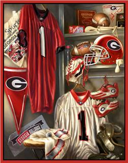 Collegiate Fleece Locker Room Panel University Of Georgia