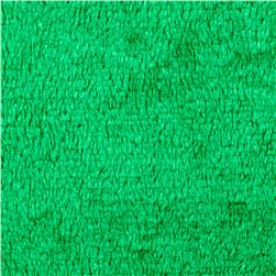 Plush Coral Fleece Solid Emerald