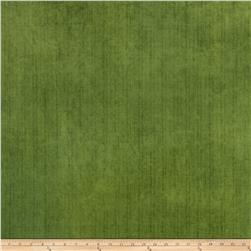 Fabricut Outdoor Velvet Grass