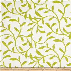 Largo Acrylic Indoor/Outdoor Tropical 1 Lime