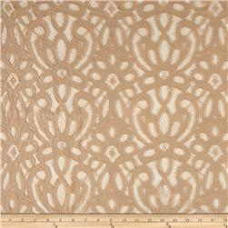 Cotton Abstract Lace Beige