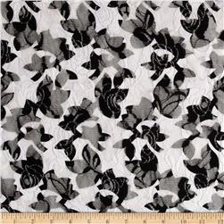 Printed Lace Floral Black/White Fabric
