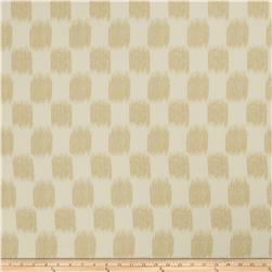 Jaclyn Smith 2604 Cashew