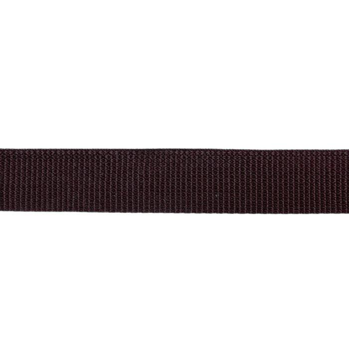 Polyester Webbing 1'' Brown