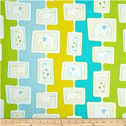 Savanna Bop Animal Stripes Yellow/Green/Light Blue