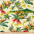 Hoffman Tropical Collection Volcano Ivory