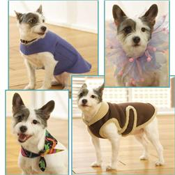 Kwik Sew Dog Coats, Bandana & Party Collar Pattern