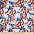 Patriotic 2017 Stars and Stripes Light Blue