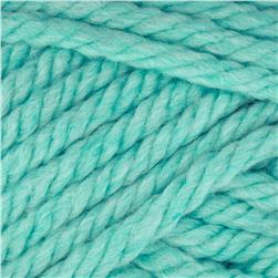 Red Heart Grande Yarn 511 Wintergreen