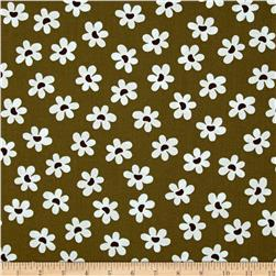 Sun Kissed Daisies Olive