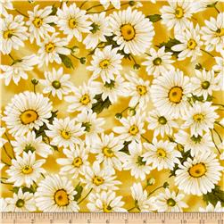 Timeless Treasures Dahlia Daisies Gold
