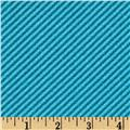 Curiosities Diagonal Stripe Aquamarine