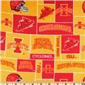 Collegiate Fleece Iowa State University Blocks