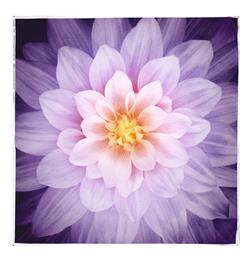 "Dream Big Digital 44"" Panel Floral Orchid"