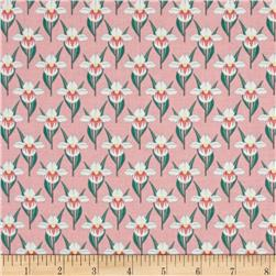 Minnesota State Flower Minnesota Lady Slipper Pink/Green