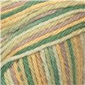 Peaches & Creme Variegated Worsted Cotton Yarn (188) Desert Bloom