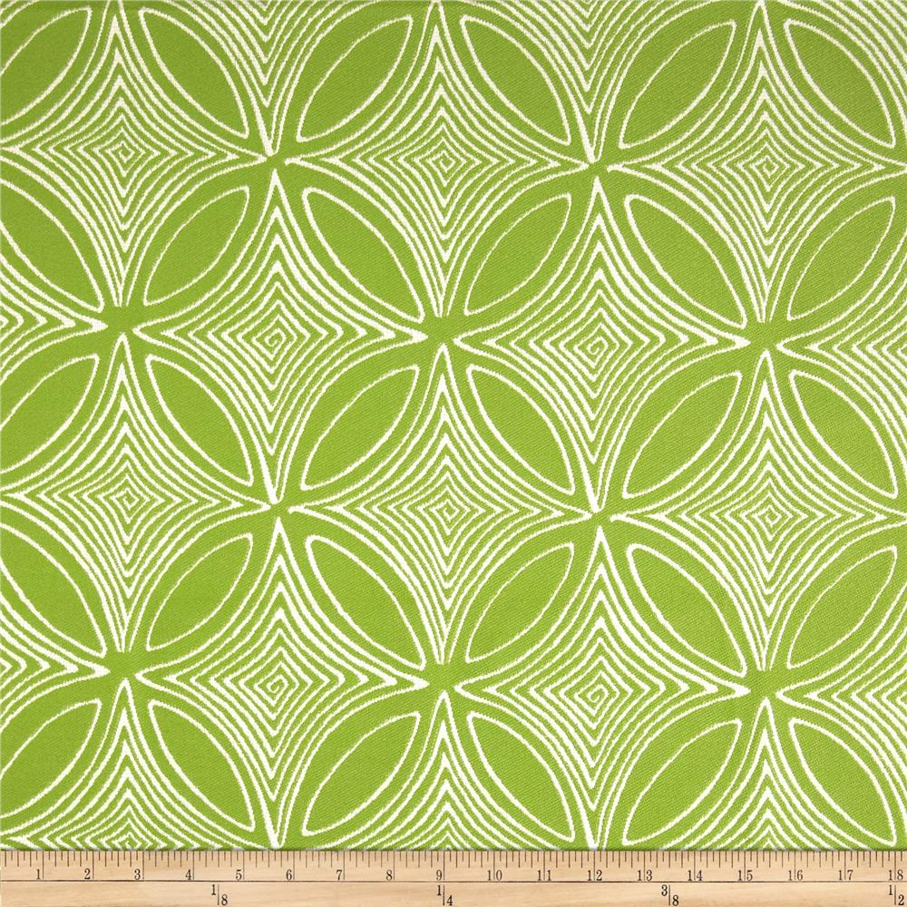 Dwell Studio Sunbrella Desert View Lime