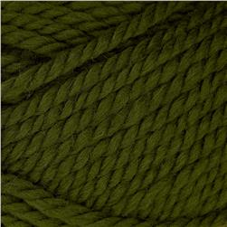 Patons Classic Wool Bulky Yarn (89243) Green