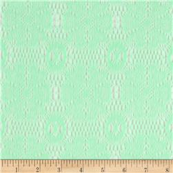 Nylon Crochet Floral Lace Light Seafoam Green