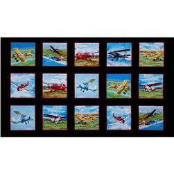 Flying High Planes Panel Multi