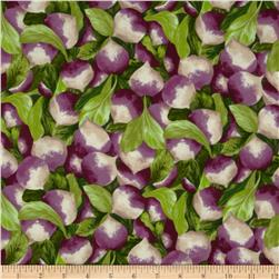 Farmer John's Marketplace Turnips Purple/Green