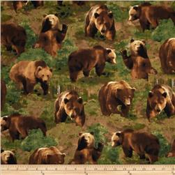 Kanvas The Great North Wilderness Brown Bear Green
