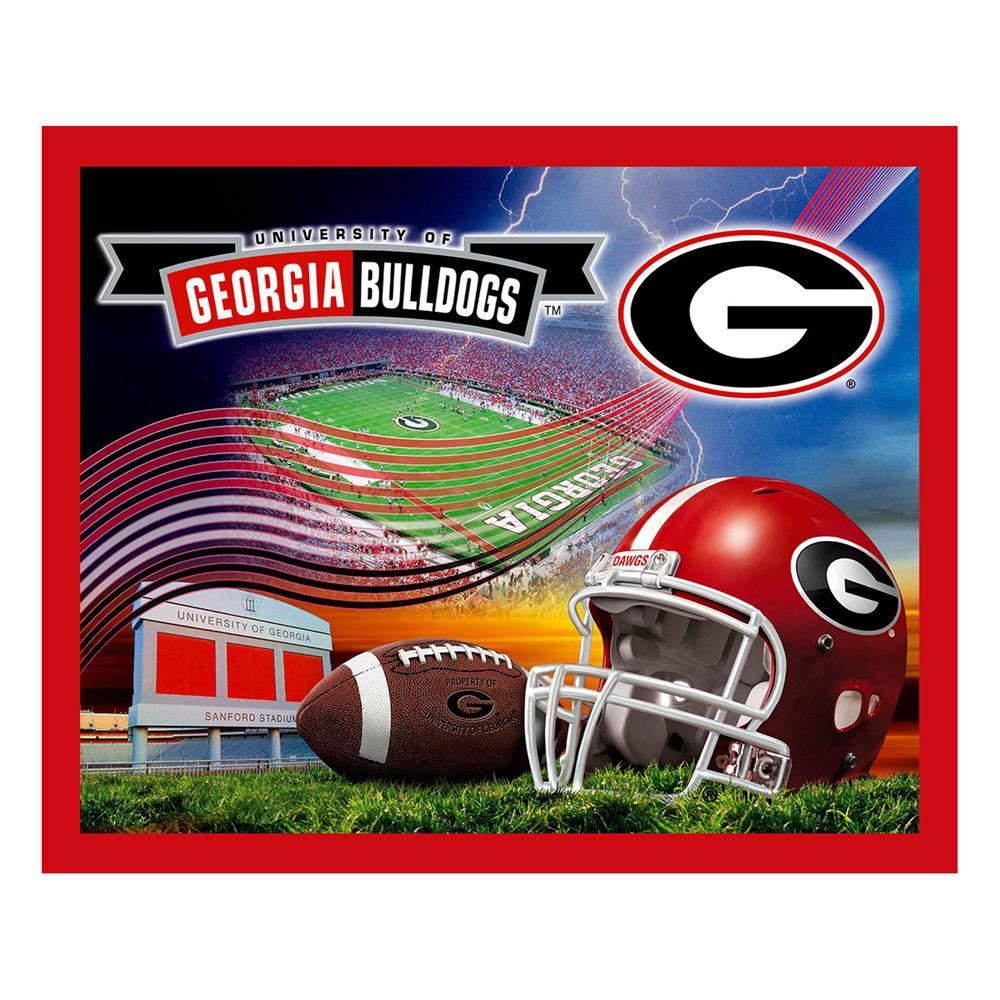 Collegiate Fleece University of Georgia Panel
