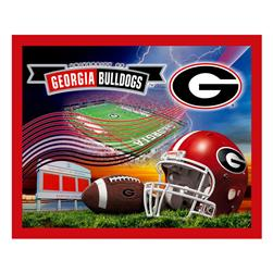 Collegiate Fleece University of Georgia Panel Fabric