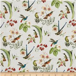 Hummingbirds in Style Metallic Cream