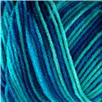 Red Heart Super Saver Economy Yarn Macaw