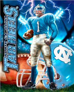 Collegiate Fleece Panel University Of North Carolina